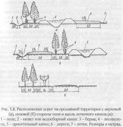 Дорога и лесополосы на орошаемых землях