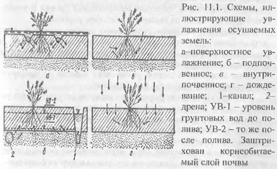 Методы и способы увлажнения осушаемых земель (часть 1)
