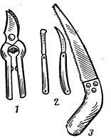 Правила, сроки и техника обрезки кустов винограда (часть 3)