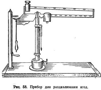 Механический состав и механические свойства винограда