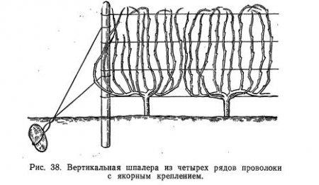 Типы опор и их устройство (часть 2)