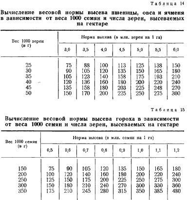 Вес 1000 семян (часть 7)